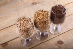 Malts in glasses Royalty Free Stock Photography