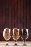 Malts in glasses Royalty Free Stock Images