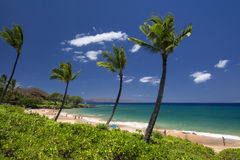 Maluaka Beach, south Maui, Hawaii, USA. Maluaka Beach on the south shores of Maui, Hawaii, USA Stock Image