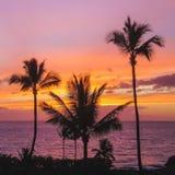 Maluaka Beach Sunset. Beautiful silhouette of a palm trees at sunset with colorful sky and dramatic clouds, Maluaka Beach, Maui, Hawaii Royalty Free Stock Photo