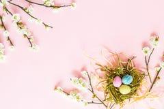 Malujący jajka w gniazdowych i kwiecistych gałąź kłama na menchiach tapetują tło Wielkanocna dekoracja Mieszkanie nieatutowy Odgó zdjęcia stock