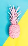 Malujący ananas zdjęcia royalty free