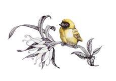 Malujący bukiet ogród kwitnie z ptakiem na białym tle ilustracji