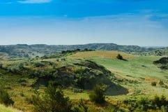 Malujący jar zieleni pola Obrazy Stock