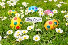 Malujący Wielkanocni jajka w trawie z kwiatonośnymi stokrotkami Obrazy Royalty Free