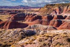 malująca Arizona pustynia Obrazy Royalty Free