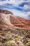 Malująca pustynia Fotografia Stock