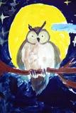 Malująca sowa Zdjęcia Stock