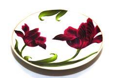 malujący talerz Zdjęcie Royalty Free