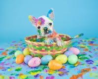 Malujący Wielkanocny szczeniak fotografia royalty free