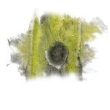 Maluje czarna żółta akwarela odizolowywającego pluśnięcie koloru atramentu uderzenia splatter watercolour aquarel muśnięcie Obrazy Royalty Free