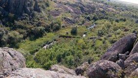 Malutka żyła rzeka Zdjęcia Royalty Free