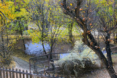 Malutki jezioro Zdjęcia Royalty Free