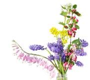 Malutki Kwiat obrazy royalty free