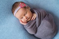 Malutki Sypialny Nowonarodzony dziecko zakrywający z bogatymi purpurami coloured opakunek fotografia stock