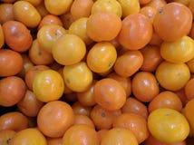 Malutkie błyszczące pomarańcze obrazy royalty free