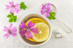 Malva sylvestris, mallow, tea with lemon and flowers. Malva sylvestris, mallow, tea with lemon and fresh flowers Stock Images