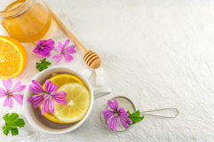 Malva sylvestris, mallow, tea with lemon and flowers. Malva sylvestris, mallow, tea with lemon and fresh flowers Stock Photo