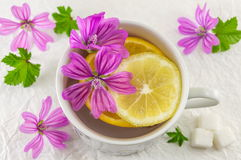 Malva sylvestris, mallow, tea with lemon and flowers. Malva sylvestris, mallow, tea with lemon and fresh flowers Stock Image