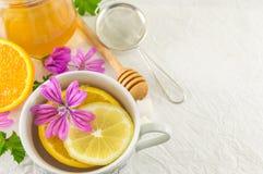 Malva sylvestris, malve, thee met citroen en bloemen royalty-vrije stock foto's
