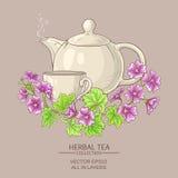 Malva tea illustration Stock Photography