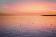 Malvafärgad solnedgång över havet och fåglarna Arkivfoto