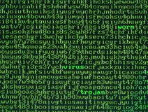 Malware. Screen full of alphanumerics with emphasis on the words virus, worm and trojan Stock Photo