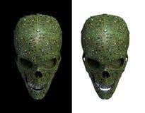 Malware skalle stock illustrationer