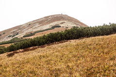 Maly Krivan hill in autumn Mala Fatra mountains in Slovakia Royalty Free Stock Images