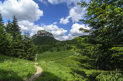 Maly Rozsutec with hiking path in National park Mala Fatra Stock Images