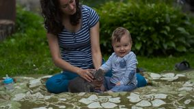 Mamá con el niño que juega en jardín con poco Gray Kitten almacen de video