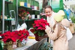 Mamá con la flor de compra del niño Imagenes de archivo