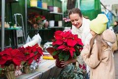 Mamá con la flor de compra del niño Fotos de archivo
