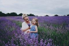 Mamá con la hija en lavanda Imagenes de archivo