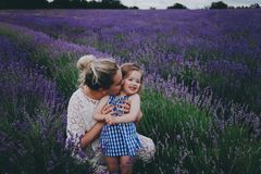 Mamá con la hija en lavanda Foto de archivo