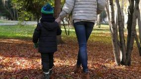 Mamá e hijo que juegan en parque del otoño La mamá lanza al hijo metrajes