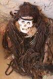 Mamã antiga com cabelo trançado longo Imagem de Stock