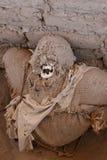 Mamã antiga envolvida na tela Fotografia de Stock