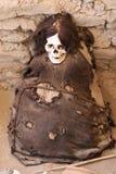Mamã antiga envolvida na tela Fotografia de Stock Royalty Free