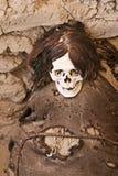 Mamã antiga envolvida na tela Imagem de Stock