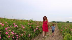 Mamã com o filho novo no jardim de rosas de florescência video estoque