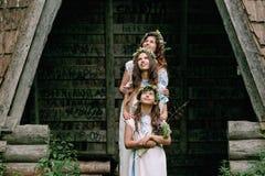 Mamã e duas filhas que andam perto do lago Imagem de Stock
