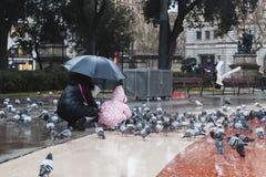 A mamã e a filha estão alimentando pombos no quadrado durante o ra fotos de stock royalty free