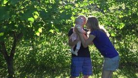 Mamã e paizinho de amor com a filha recém-nascida do bebê na luz solar 4K video estoque