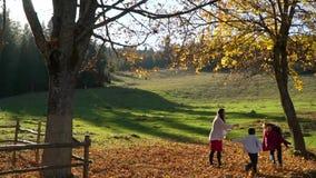 A mamã e suas crianças têm o divertimento na floresta que do outono salta e joga as folhas no ar Estão rindo E filme