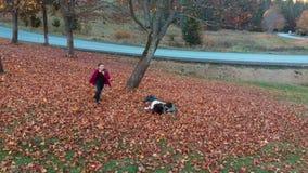A mamã e suas crianças têm o divertimento na floresta que do outono salta e joga as folhas no ar Estão rindo E video estoque