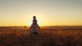 Mamã feliz do pai da família e dois filhos que andam em um campo de trigo e que olham o por do sol Imagens de Stock