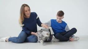 Mamã feliz, filho e seu gato em um portador plástico especial do animal de estimação da gaiola em casa filme