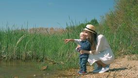 A mamã feliz nova mostra a natureza ao bebê durante o descanso em lagos da costa com juncos e a vista na distância filme