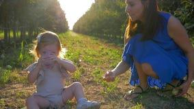 A mamãe nova dá o vidro da agua potável à filha pequena que senta-se na grama entre fileiras das árvores na natureza durante a co vídeos de arquivo